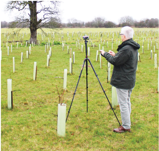 Fig. 1: Gunton Woodland Burial Park volunteers planted numerous saplings throughout the burial grounds, which will grow into a beautiful woodland.
