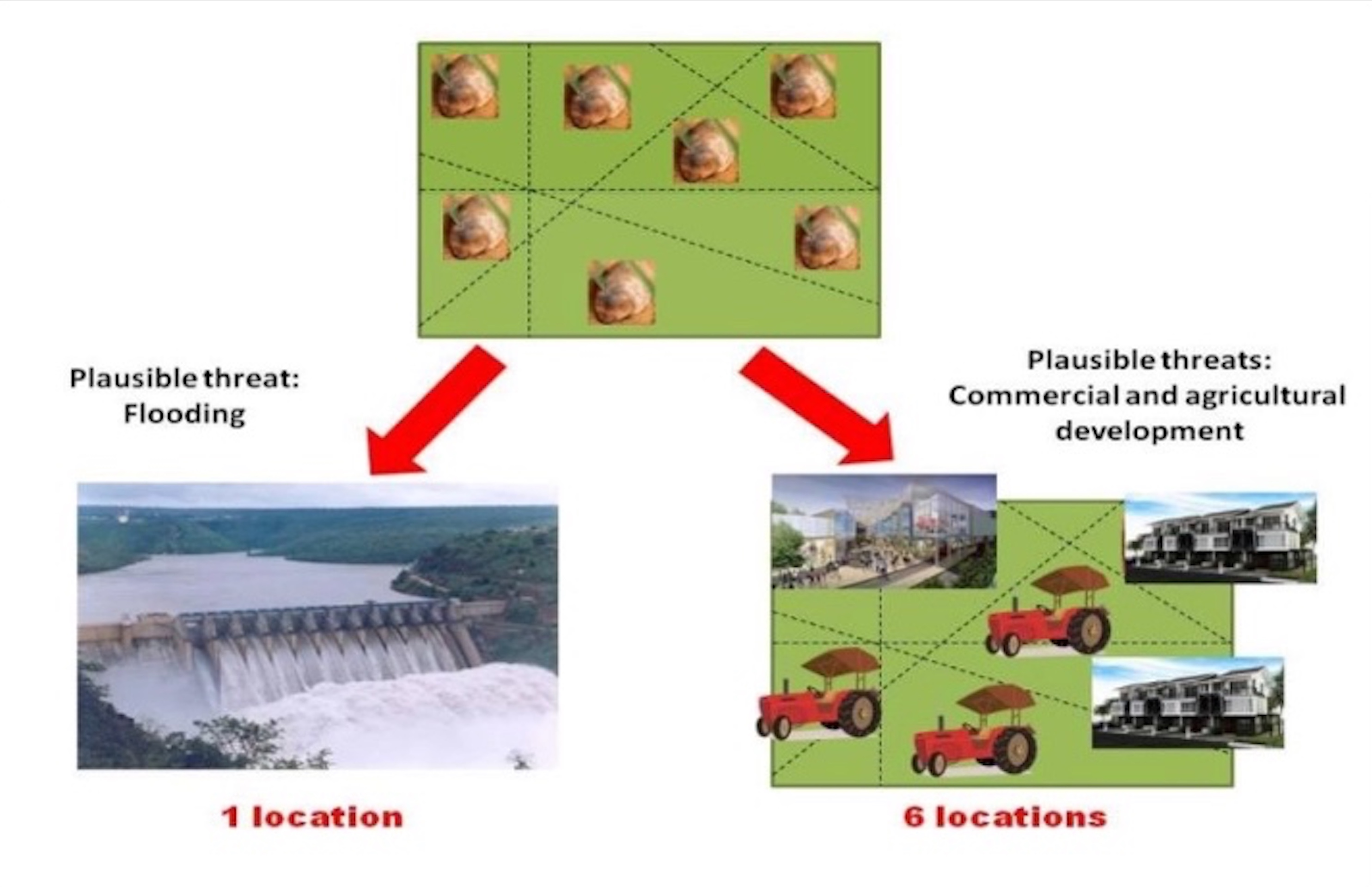 Fig. 3: The last seven remaining subpopulations of a golden gole species exist in fields within the same region (< 100 km2) but isolated from each other by a matrix of unsuitable habitat. If the most plausible threat is a dam that will flood the region and drown all subpopulations, this is considered one location and may qualify for Critically Endangered under B1ab(i).