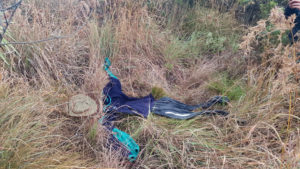"Fig. 4: A simulated ""body"" made from clothing that was used in the search and rescue trial. (Credit: L. Wijnberg.)"