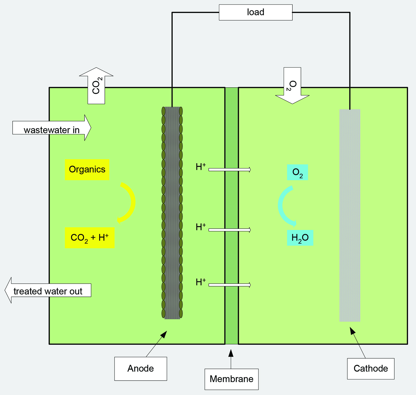 Microbial fuel cells: A new approach to waste-water