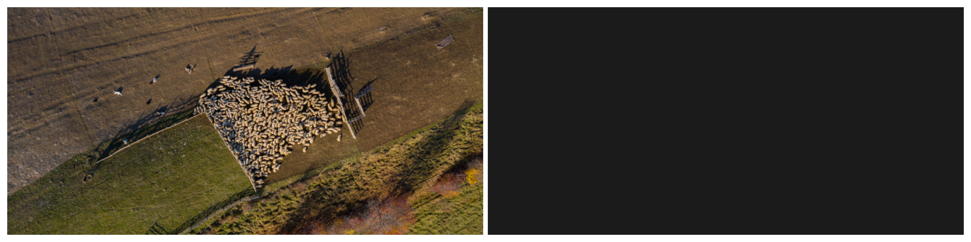Fig. 1: The image before any training areas are added: What humans see (left) vs what the AI model sees (right).